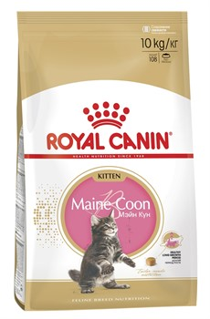 ROYAL CANIN Для котят мейн-кун (4-12 мес.), Kitten Мaine Coon - фото 11259