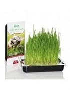ТитБит Трава для кошек 0,040 гр