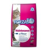 Forza10 Maintenance Pesce (рыба)