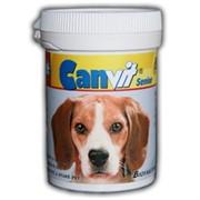 Канвит сеньор (витаминно-минеральная добавка) 80гр.