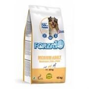 Forza10 Medium  Maintenance Pollo/Patate (курица/карт.) (15 кг)