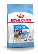 Royal Canin сухой корм  для щенков гигантских пород 8 18 мес., Giant Junior 31 (15 кг)
