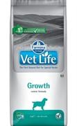 FARMINA Vet Life Dog Growth Нарушения роста, дефицит питательных веществ (12 кг)