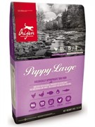 orijen Puppy Large корм беззерновой для щенков крупных пород Цыпленок (6 кг)