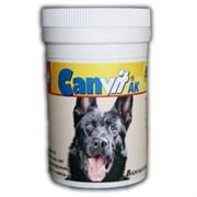 Канвит АК (витаминно-минеральная добавка) 80гр.