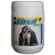 Канвит биокаль плюс (витаминно-минеральная добавка) 250гр.