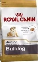 Royal Canin сухой корм для щенков английского бульдога до 12 мес., Bulldog Junior 30 (12 кг) - фото 12692