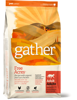 GATHER Органический корм для кошек с курицей (3,63кг) - фото 21962