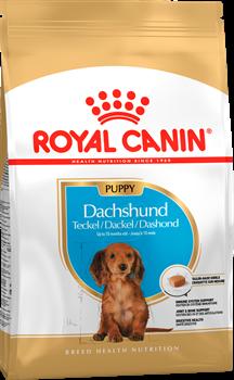 ROYAL CANIN (Роял Канин)Для щенков таксы до 10 мес., Dachshund Junior 30 - фото 22154