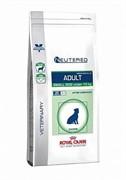 ROYAL CANIN ветеринарный Neutered Adult Small Dog Корм для кастрированных собак мелких размеров (3,5 кг)