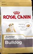 ROYAL CANIN Для щенков английского бульдога до 12 мес., Bulldog Junior 30