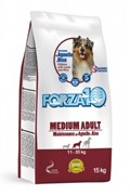 Forza10 Maintenance  Agn/Riso Medium/Large  (ягнёнок и рис) (15 кг)