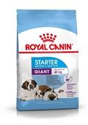 ROYAL CANIN (Роял Канин) Для щенков гигантских пород 3 нед. - 2 мес., беременных и кормящих сук, Giant Starter