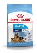 Royal Canin сухой корм для щенков крупных пород 3 нед. 2 мес., беременных и кормящих сук, Maxi Starter (15 кг)