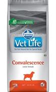 FARMINA Vet Life Dog Convalescence Период восстановления