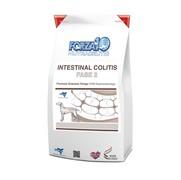 FORZA10 Intestinal Colitis ФАЗА 2