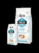 Brit Fresh Fish with Pumpkin для взрослых собак с рыбой и тыквой