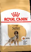 ROYAL CANIN SETTER ADULT Для Сеттеров старше 12 месяцев