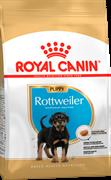 ROYAL CANIN Для щенков ротвейлера от 2 до 18 мес., Rottweiler Junior 31