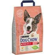 Dog Chow ACTIV корм для активных собак курица (14 кг)