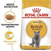 Royal Canin сухой корм для британских короткошерстных кошек (1 10 лет), British Shorthair (10 кг)