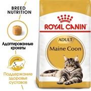 Royal Canin сухой корм для кошек мейн кун 1 10 лет, Мaine Coon 31 (10 кг)