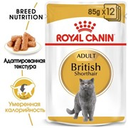 ROYAL CANIN (Роял Канин) Кусочки для британских кошек (0,085 кг)