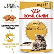 ROYAL CANIN Кусочки в кошек Мейн Кун