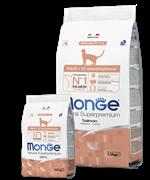 Monge Cat корм для взрослых кошек с лососем Salmon Adult Cat 10 кг