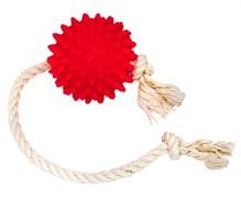 Зооник Мяч на веревке, 6 см