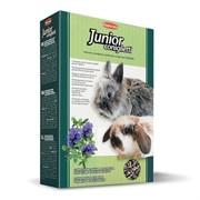 Padovan для крольчат, Grandmix Junior Coniglietti 850 гр