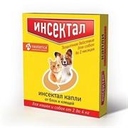 Инсектал капли от клещей и блох для кошек и собак 2-4кг 0,5мл