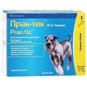 Прак-тик Капли для собак 11-22кг 2,2мл №3