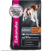 Eukanuba Dog корм для взрослых собак средних пород с курицей