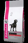 Сухой корм Eukanuba Dog DNA для взрослых собак породы лабрадор-ретривер (10 кг)