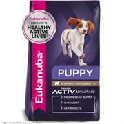 Eukanuba Dog корм для щенков всех пород ягненок  12 кг