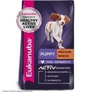 Eukanuba Dog корм для щенков средних пород