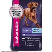 Eukanuba Dog корм для щенков крупных пород 15 кг