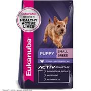 Eukanuba Dog корм для щенков мелких пород   10 кг