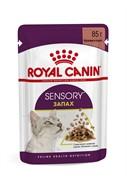 ROYAL CANIN Sensory запах пауч для кошек в соусе