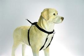 I.P.T.S. Шлейка д/собак нейлоновая маленькая черная 22*30см